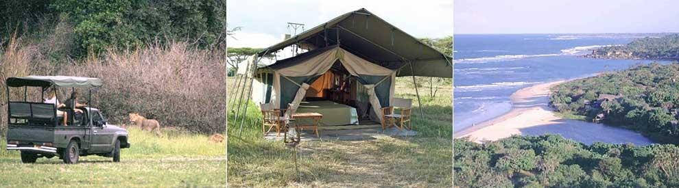 safari-